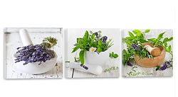 Cuadro decoración, Canvas 120x40 cm, HIERBAS, PLANTAS, COCINA, RURAL, VERDE